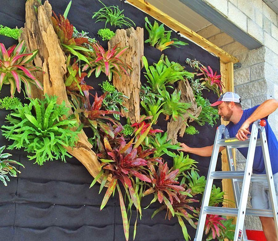 Choose The Best Vertical Garden System For You