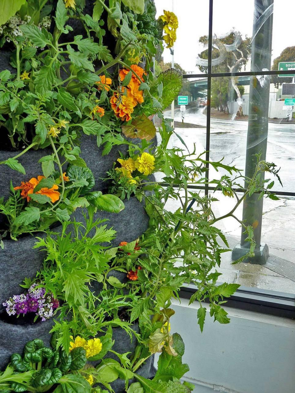 Florafelt-Vertical-Garden-Aquaponic-Tower-4