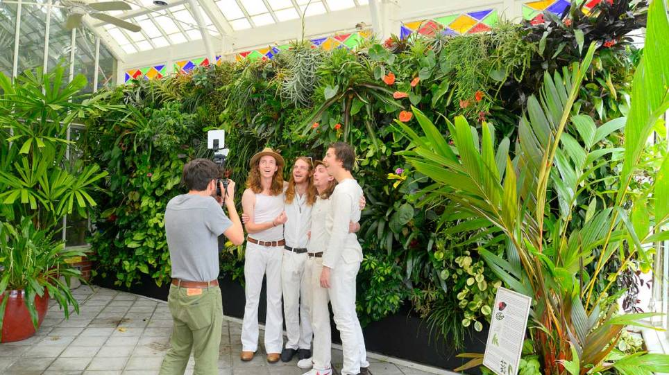 Hibbity-Dibbity-at-the-Conservatory-Of-Flowers-San-Francisco-Florafelt-Vertical-Garden-Living-Wall_CJB3054