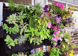 Florafelt Vertical Garden Planters planted with herbs and flowers.