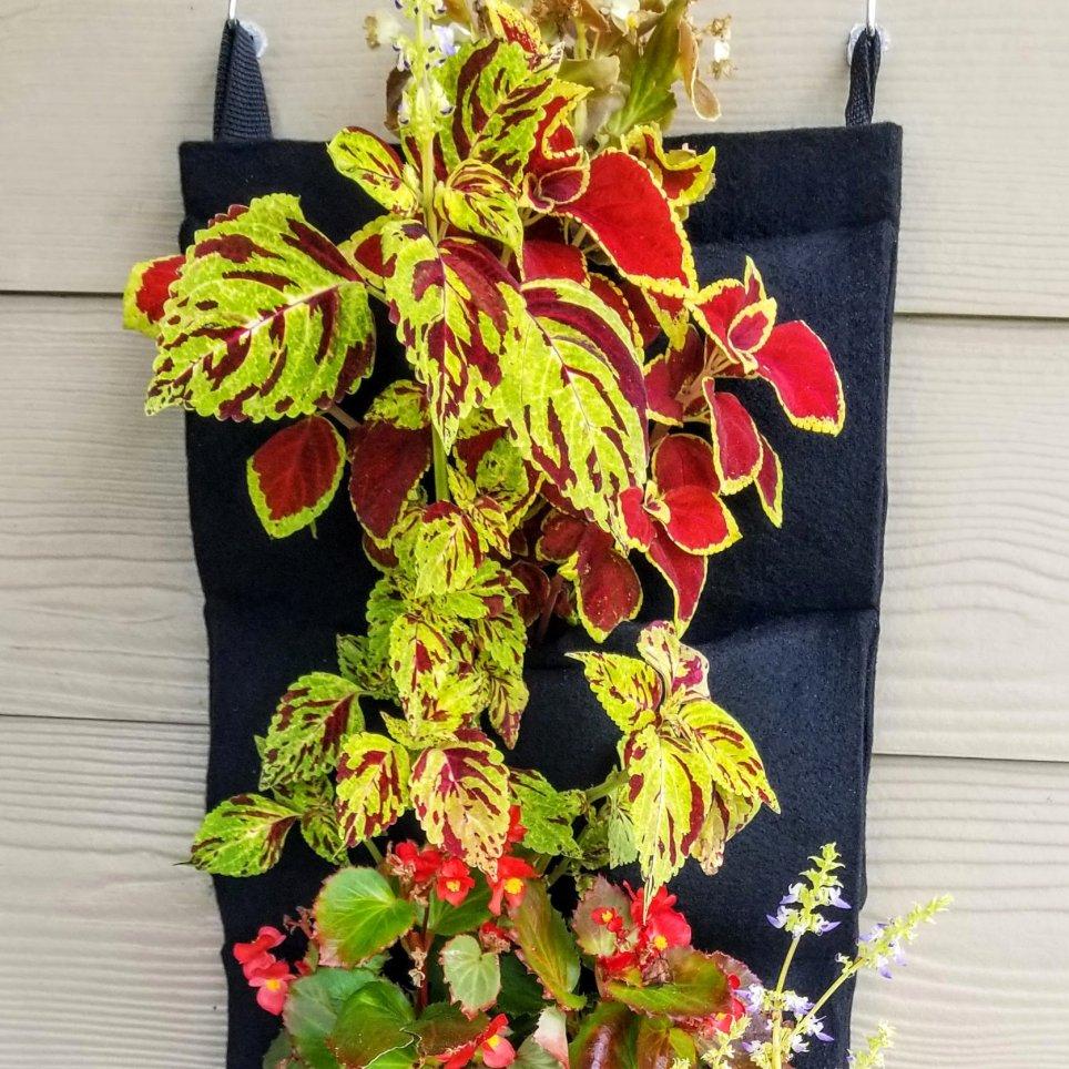 Hanging tabs let you mount Florafelt Pocket Panels anywhere.