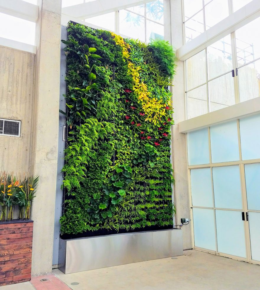 Recirculating Irrigation for Living Walls – Plants On Walls