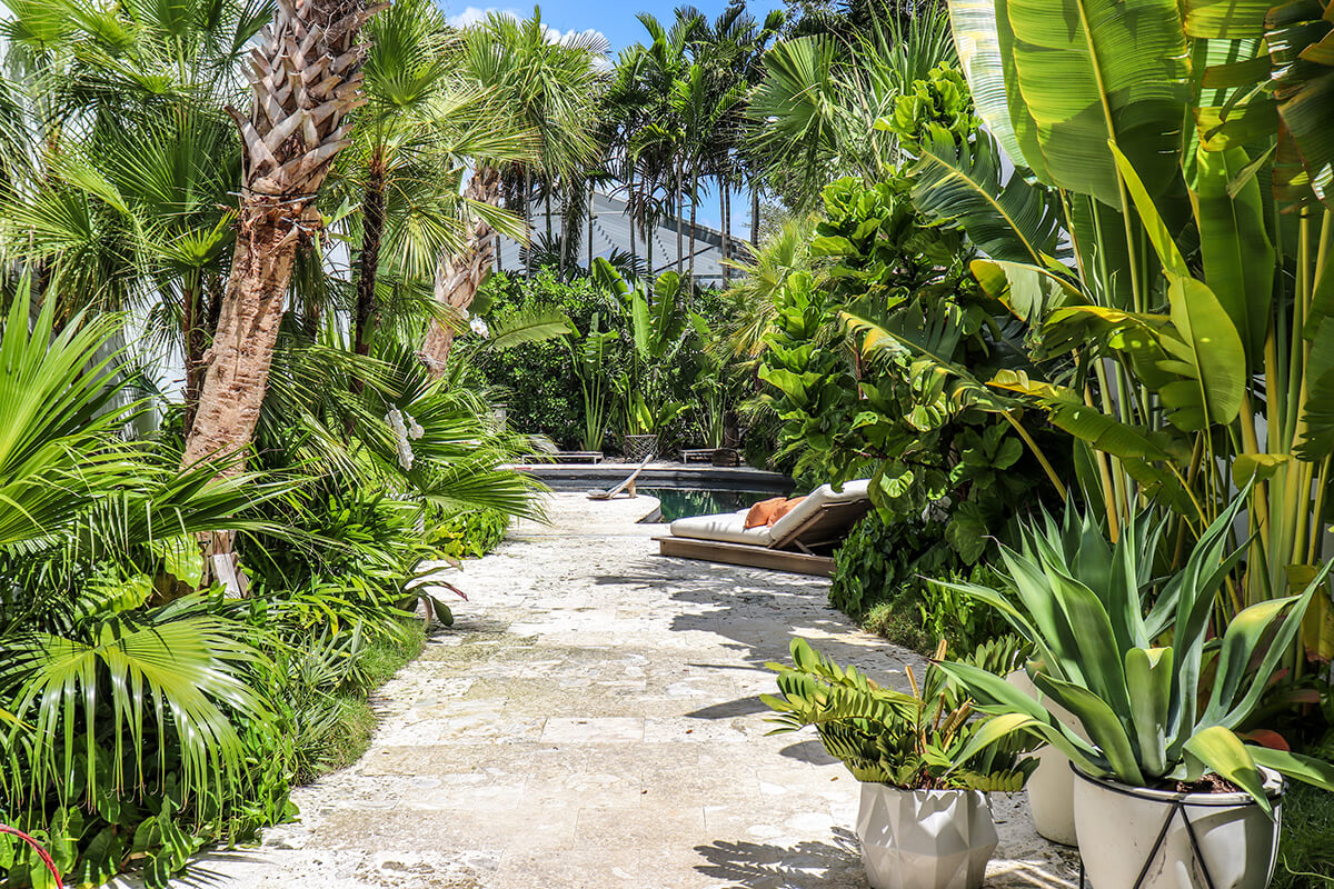 TROPICAL LANDSCAPE DESIGN (PRIVATE RESIDENCE) - Plant The ... on Tropical Backyard Ideas  id=67237