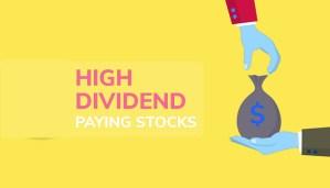 Highest Dividend Funds