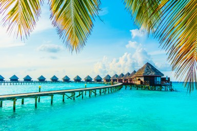 tropical islands to visit - maldives