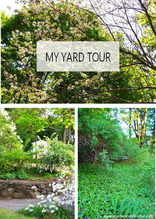 My yard tour - Plaster & Disaster