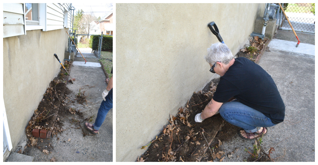 Planting flower beds -- Plaster & Disaster