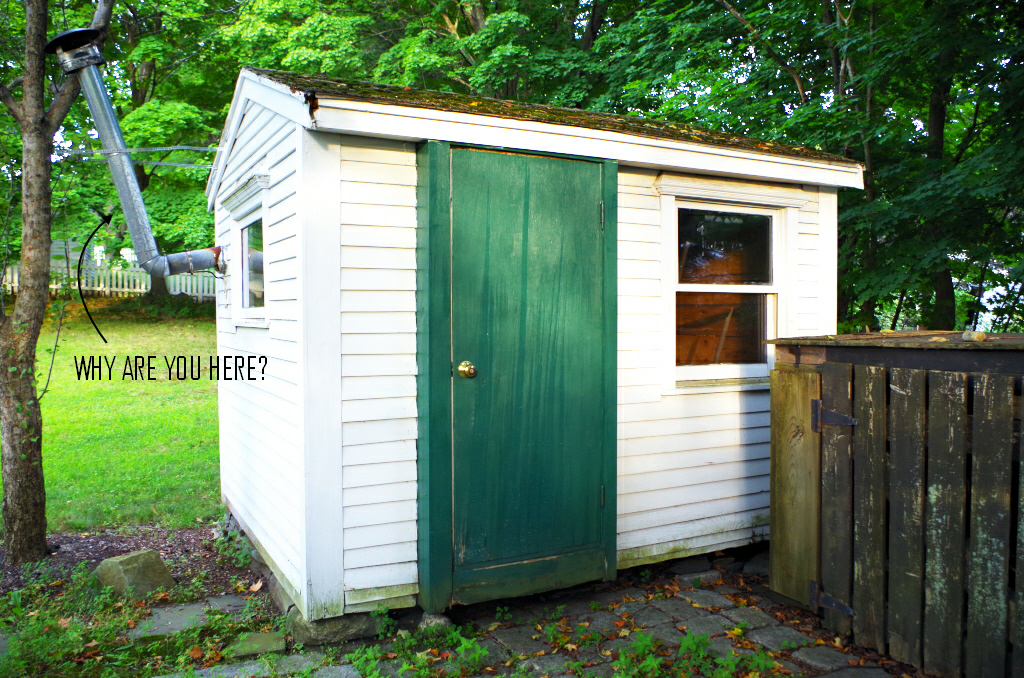 Disaster confessional - my shed - Plaster & Disaster