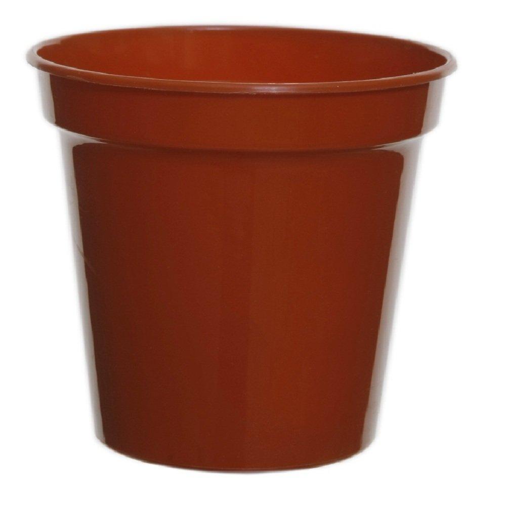 Mini Terracotta Pots Saucers