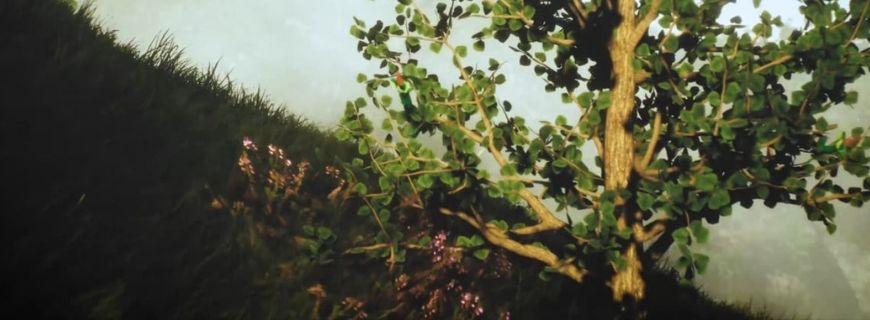 Science Brings Back Smell Of Long-Dead Flower