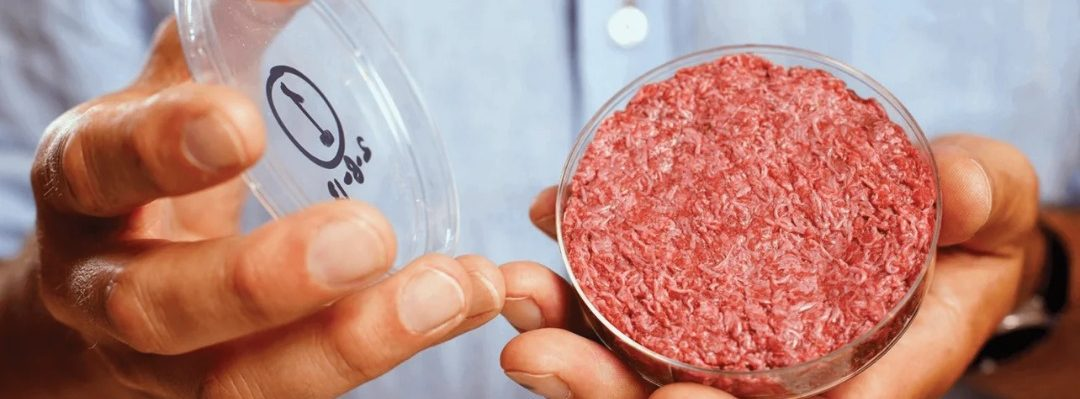 lab grown burget as 3d printed meat by astronauts