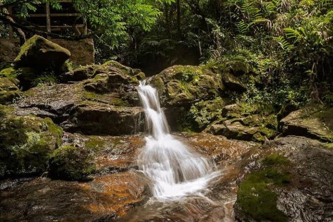 How To Explore The Beauty Of Obudu Mountain Resort