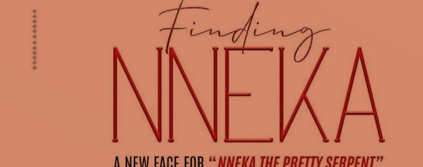 "Playnetwork Holds Audition For The New Face Of ""Nneka The Pretty Serpent"""