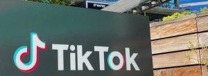 Larry Ellison's Oracle Has Entered The Race To Acquire TikTok