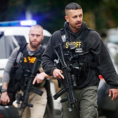 War on Domestic Terror