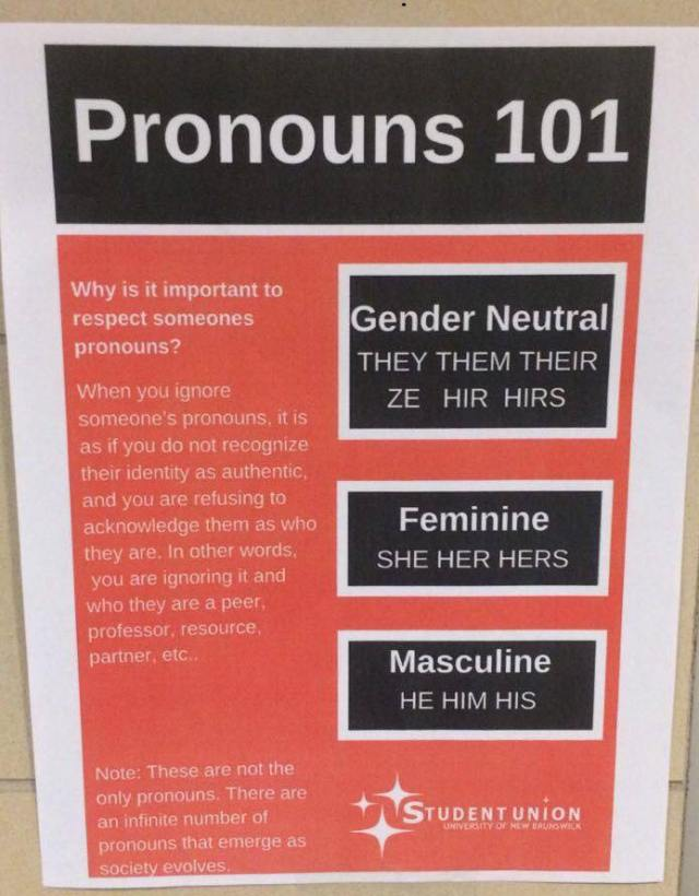 Poster about pronouns