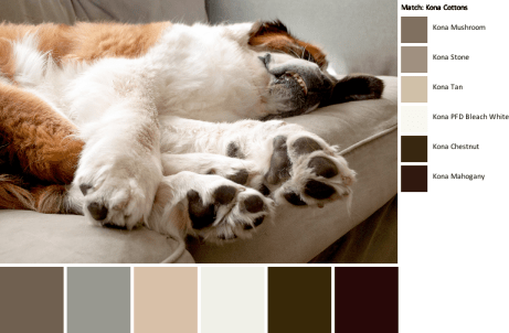 pawesome-palette