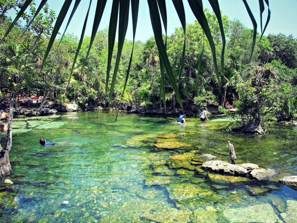 My Day Exploring Cenote Azul!