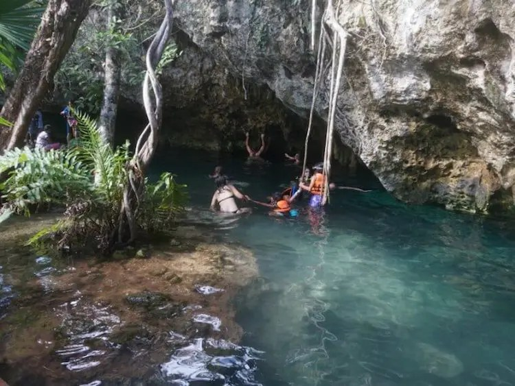 swim at Gran cenote