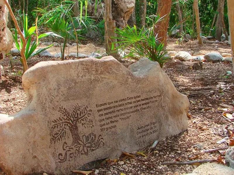 Xel-Ha Chacah Garden