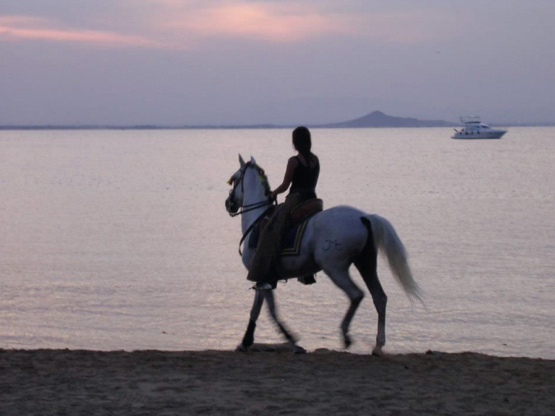 Horse riding by the Mar Menor