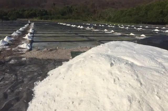 Salt of Cuyutlán, Colima