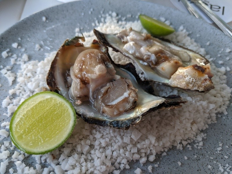 Oysters on the half shell at La Sal Restaurant in Manzanillo, Colima