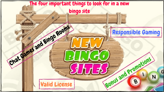 The Four Important Things to look for in a new bingo site