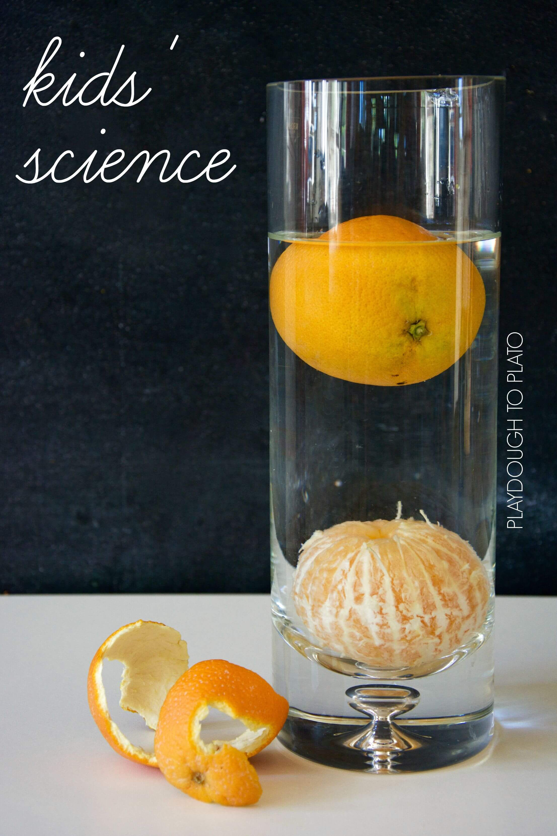 Orange Buoyancy Science Experiment