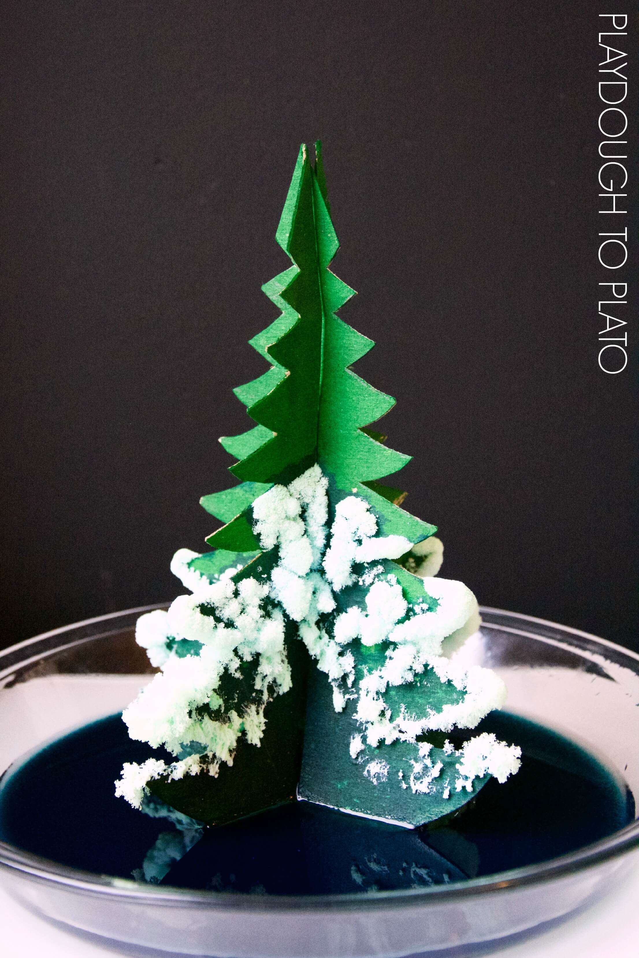 Growing A Crystal Tree