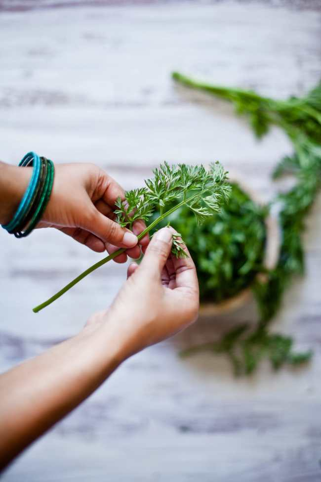 Trimming Carrot Greens | Playful Cooking