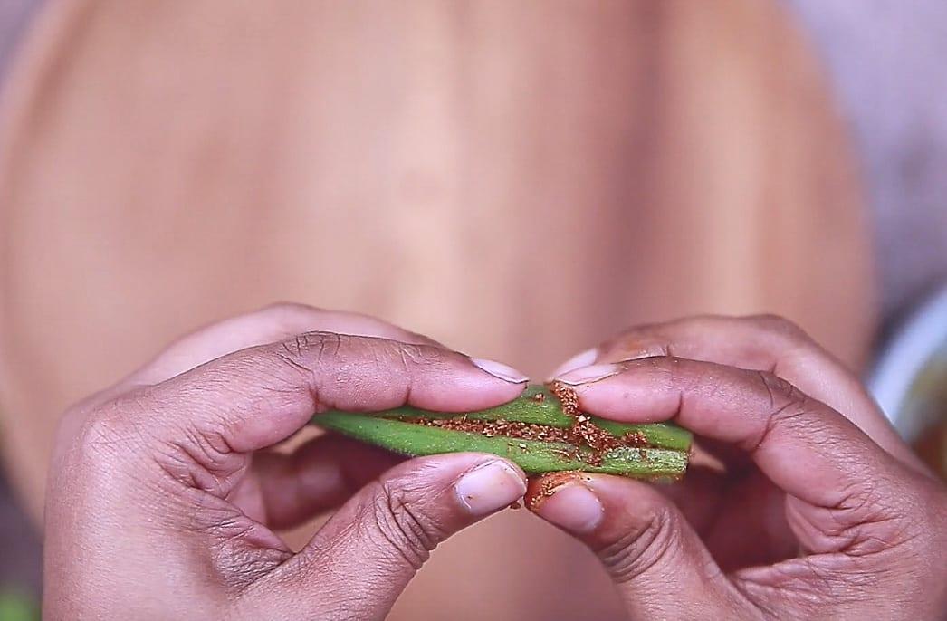 bharwa masala bhindi step 03