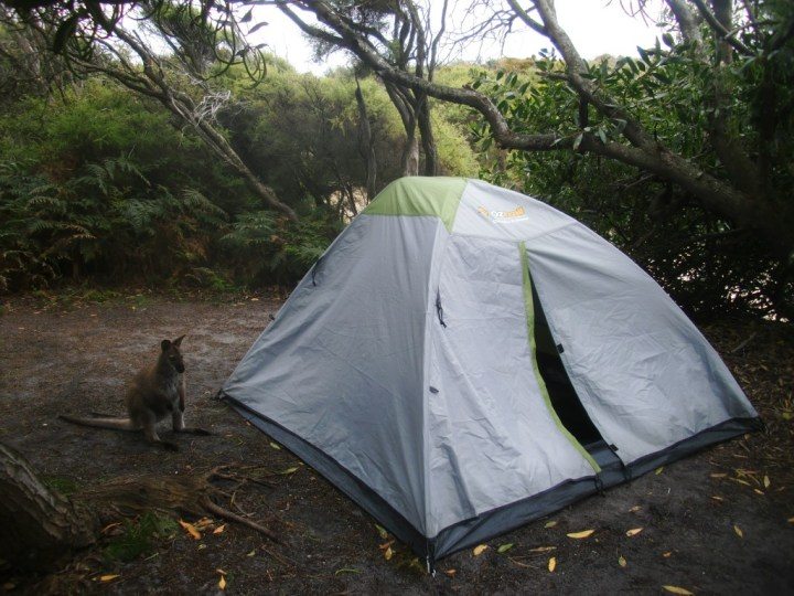 © Romain Dondelinger Tasmanie Freycinet 7