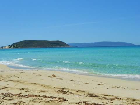 elafonissos-grece-ile-plage-turquoise