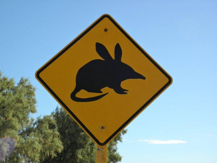 roadsign-australie-whv-19 ©Romain Dondelinger - PlayingTheWorld