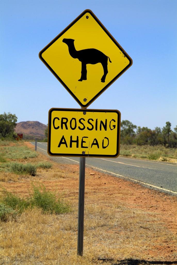 Australia, NT, East Mac Donnell Range, ©Romain Dondelinger - PlayingTheWorld