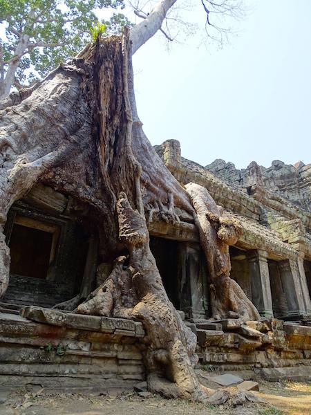 ©playingtheworld-temples-angkor-preahkahn-cambodge-voyage-24