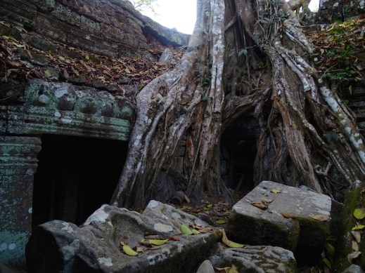 ©playingtheworld-temples-angkor-taprohm-cambodge-voyage-12