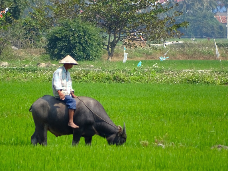 ©playingtheworld-hoian-vietnam-voyage-23