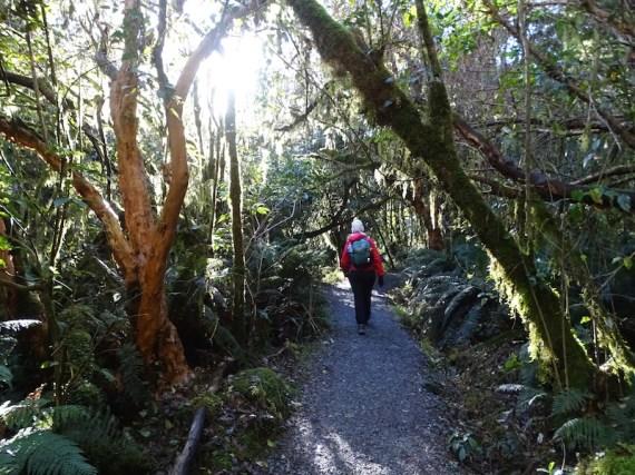 ©playingtheworld-nouvelle-zelande-milford-sound-fiordland-voyage-7