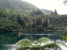 Ballade le long du lac