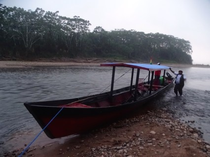 playingtheworld-bolivie-foret-amazonie-selva-rurrenabaque-voyage-72