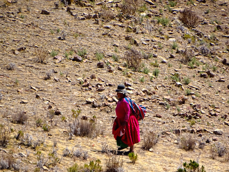 playingtheworld-bolivie-copacabana-titicaca-voyage-22
