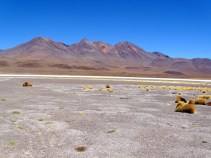 ©playingtheworld-bolivie-salar-uyuni-voyage-56