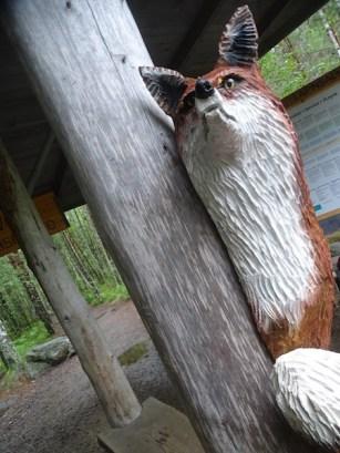 "Rapovesi signifie ""renard"" en finnois !"