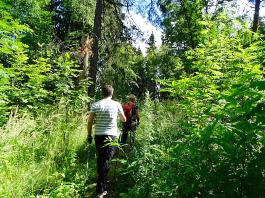 ©playingtheworld-finlande-lacs-mokki-voyage-33
