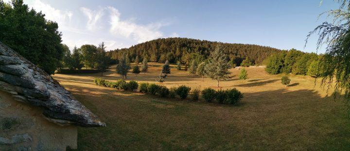 Une belle forêt de Lozère