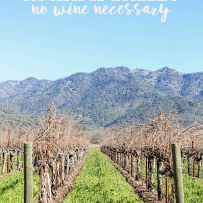 10 Things to Do in Napa Valley If You Don't Drink Wine