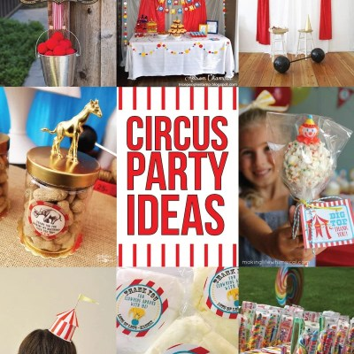 41 Amazing Circus Party Ideas