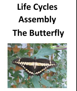 Butterfly Assembly